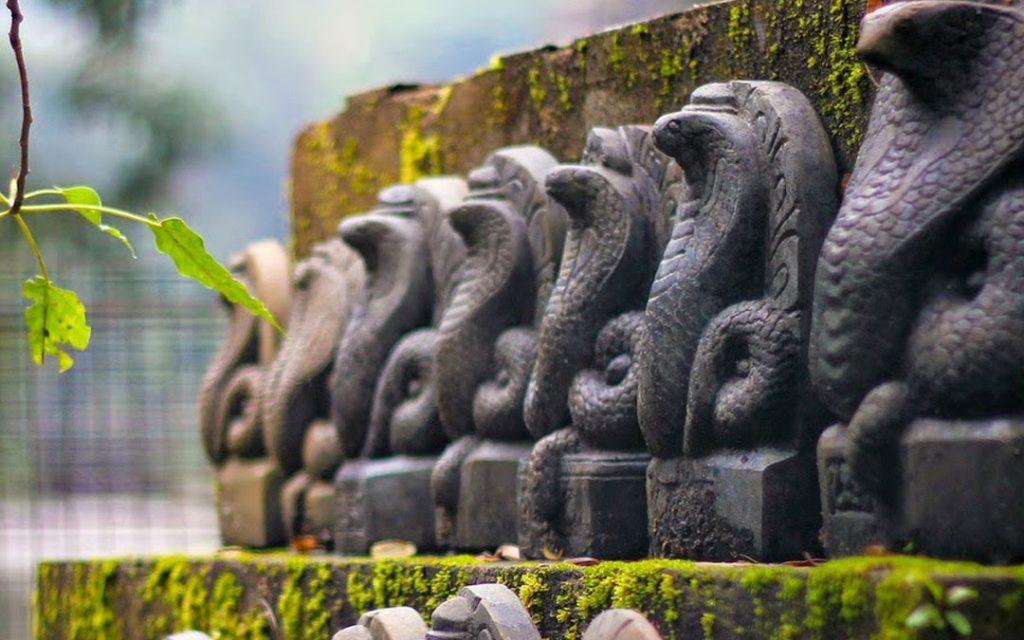 mannarasala-temple-snake-statues