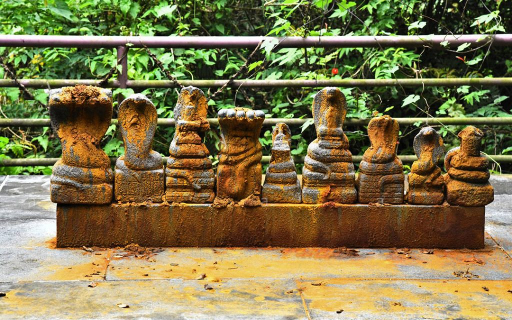 idol-of-snake-gods-in-a-hindu-temple