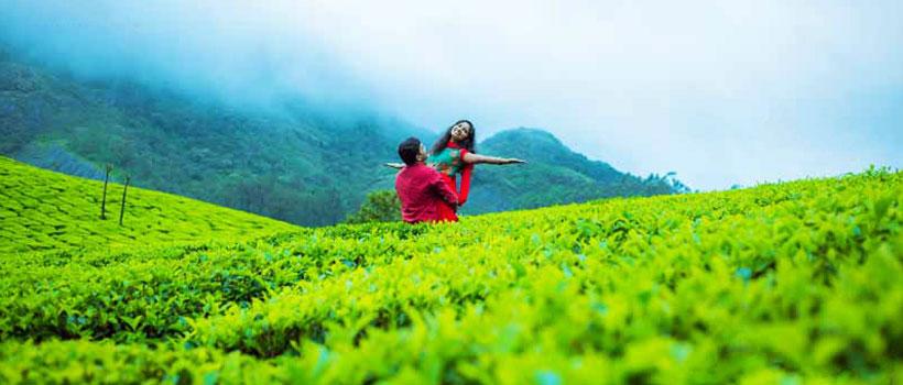 Honeymoon couples in Munnar, Kerala