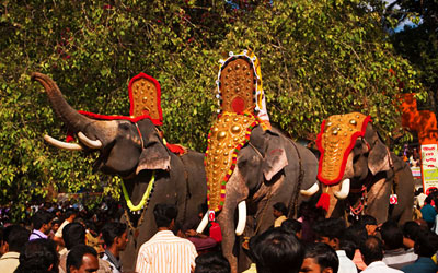 Adoor, Sree Parthasarathy temple, Gajamela festival, caparisoned elephants in ritual procession