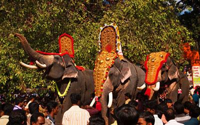 Adoor, Sree Parthasarathy temple, Gajamela festival, caparisoned elephants in ritual procession