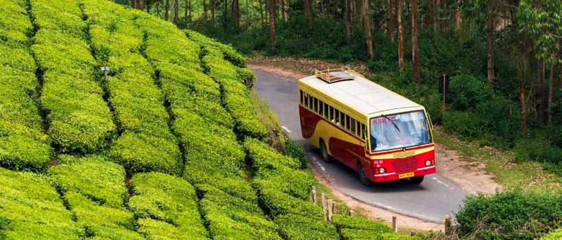 Bus on the road, Devikulam Tea Plantation, Munnar, Kerala