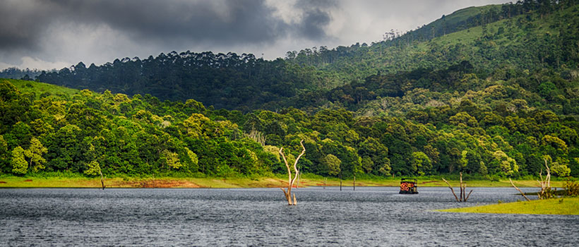 A Scenic View of the Forest and Mountains on a Cloudy Day in Periyar Tiger Reserve, Thekkady, Idukki District, Kerala.