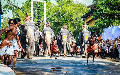A glimpse of Guruvayur Anayottam(elephant race) in Guruvayur, Kerala