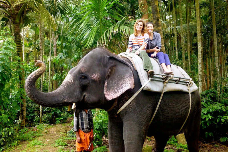 fullday-elephant-ride