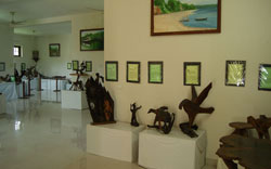 bay-island-driftwood-museum-alleppey