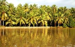 karamana-river-kovalam