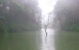 lake-vagamon