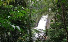 soochippara-waterfalls-wayanad