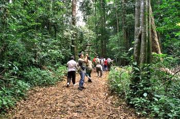 Silent Valley wildlife Sanctuary